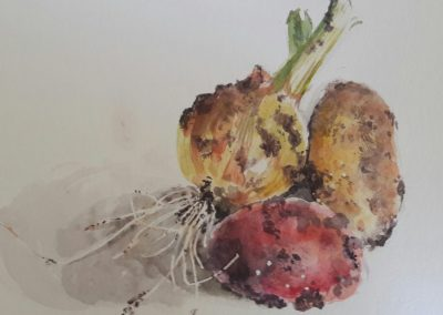 Potatoes and onion from the garden – watercolour