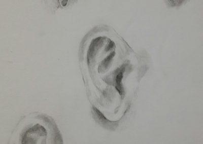 Ears – pencil