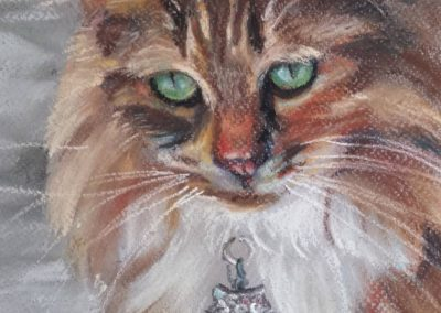 Lily – pastel on paper