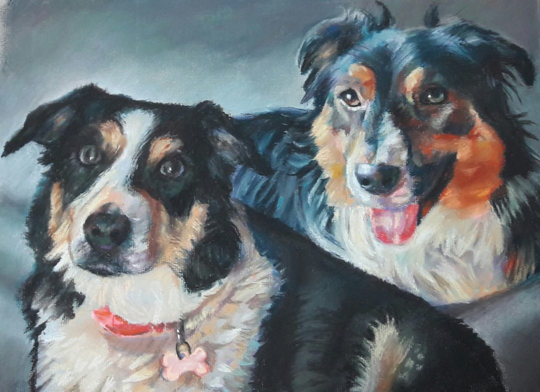 Collies – pastel on paper